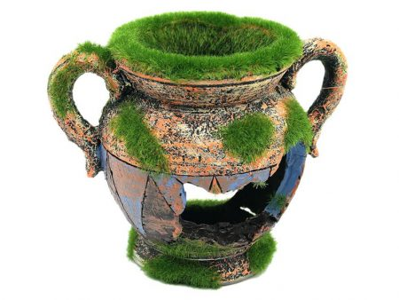 Aquarium Decoration Vase With Moss