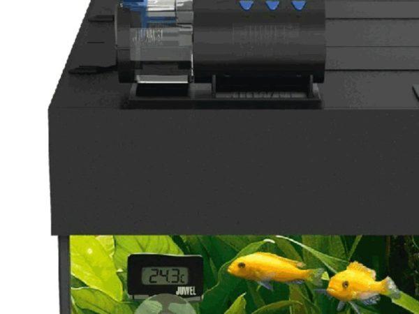 Adjustable Automatic Feeder Fish
